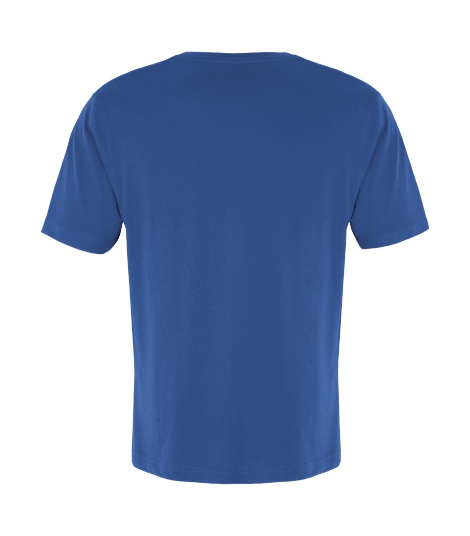 ATC True Royal Vneck Tshirt